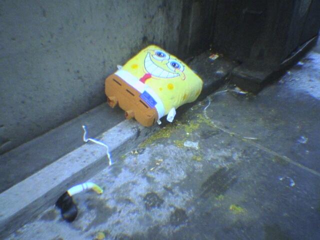 [Image: spongebob01_140392716.JPG]